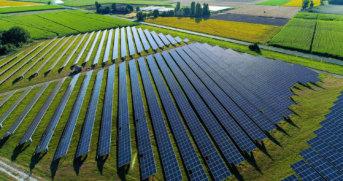 Huertos fotovoltaicos generan mucha energía limpia
